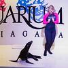 160617 Aquarium debut 1