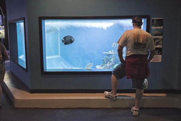 160906 CU Aquarium 3
