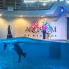160906 CU Aquarium 1