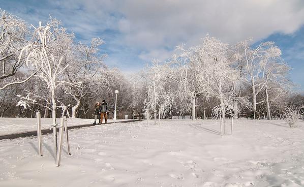160120 Prospect Winter 3