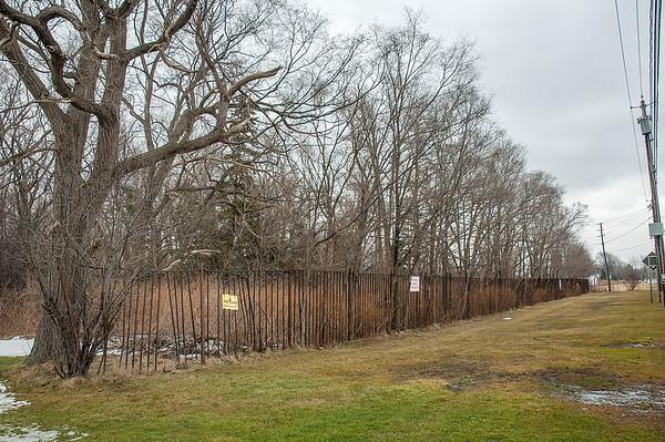 160126 Oppenheim Zoo 1