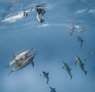 Snorkel fun