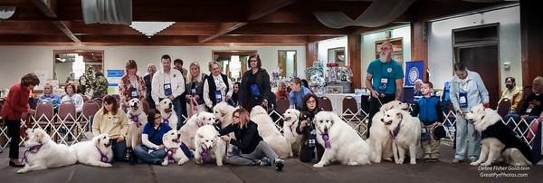 The Rescue Group Photo 2-6918