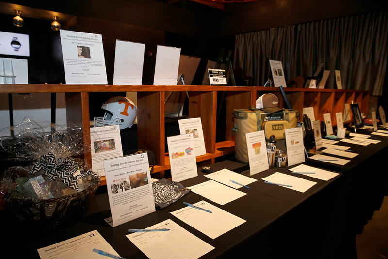 Healing Hands Helping Heros event on November 10, 2016.  Photos by Donn Jones Photography.
