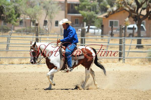 Reining & Ranch Riding