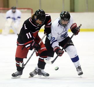 2016 High School  Ice Hockey