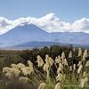 20160122 Mt Ngarahoe from Desert Road - Tongariro National Park  _MG_7091 WM WM a