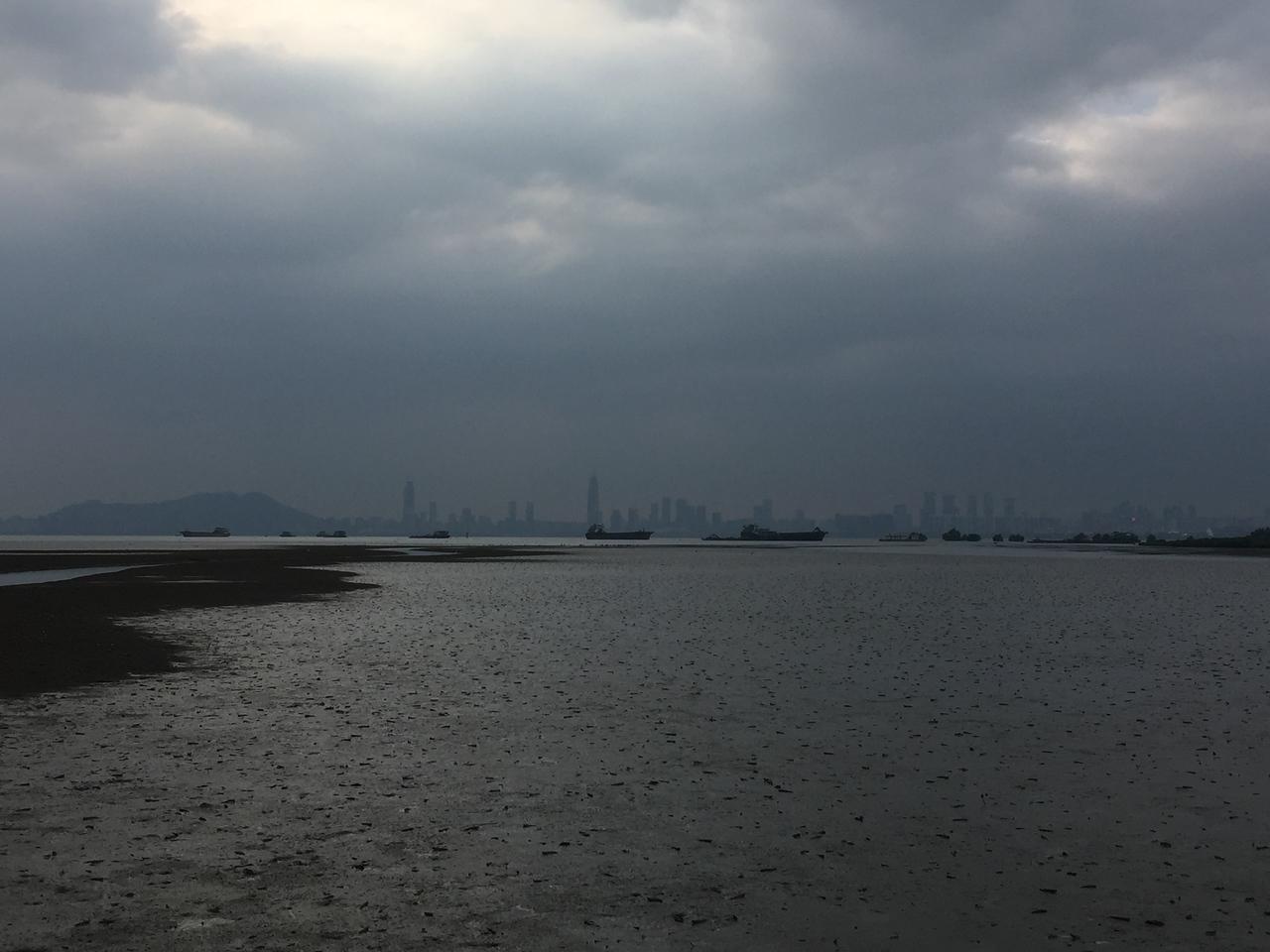 Mai Po mudflats