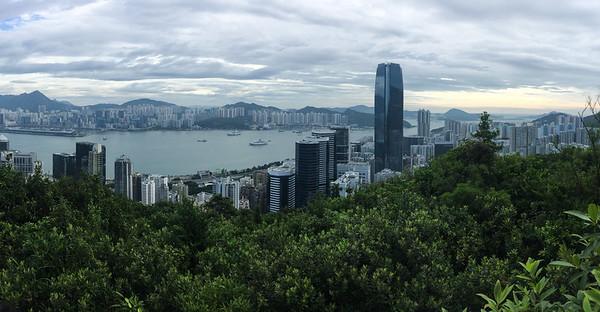 Hong Kong Birding