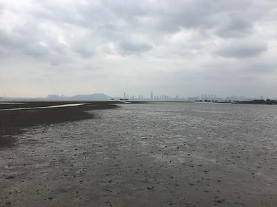 The amazing Mai Po mudlflats - overlooking mainland China