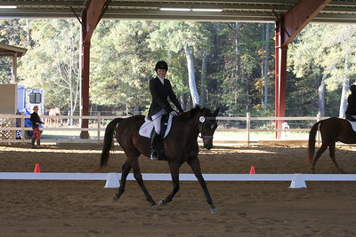 11-5-2016 Dressage At Sharon Oaks