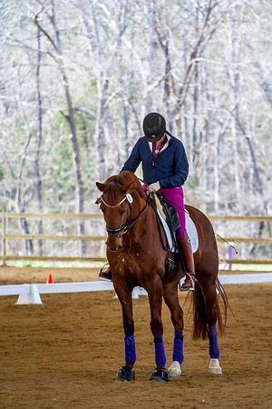 2-27-2016 Dressage At Sharon Oaks