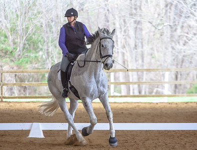 3-19-2016 Dressage At Sharon Oaks Stables
