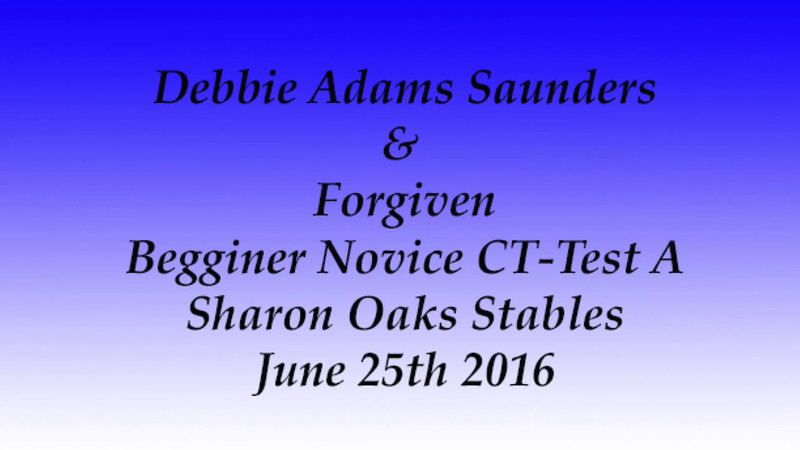 Debbie Adams Saunders Sharon Oaks Stables 6-25-2016