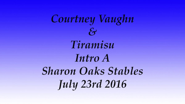7-23-2016 Dressage At Sharon Oaks