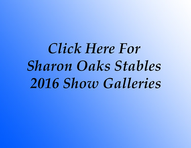 Sharon Oaks 2016 Cover
