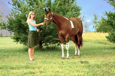 2016 Horse/Livestock/Pet Photo Sessons