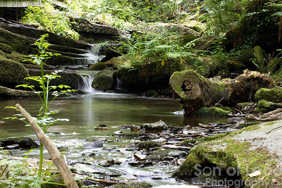 St Nectans Glen