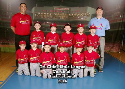229000_09_Cardinals_14