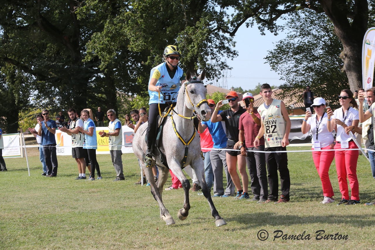 Sabrina Arnold (GER) first over the line Young Horse Championship, France