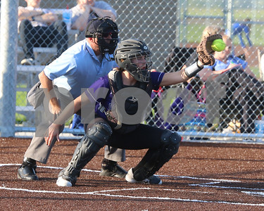 LHS Softball at Regionals