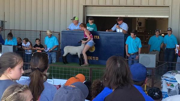 2016 Lamb and Goat Sale