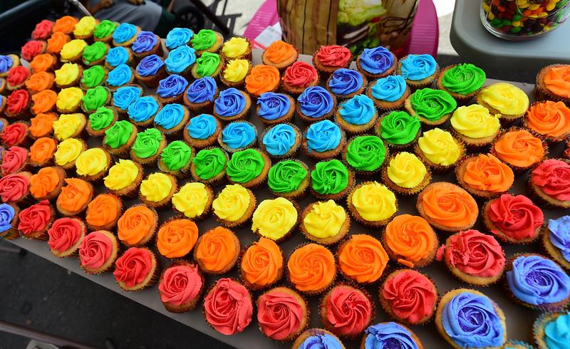 Longmont Gay Pride Festival
