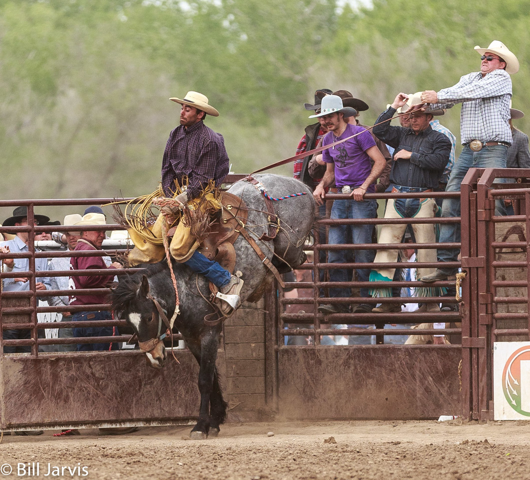 Ranch Bronc Riders