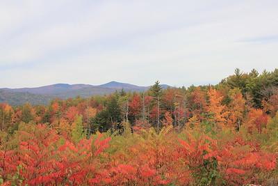 Dog Mountain - Vermont