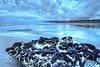 The beautiful beach in Port Waikato.