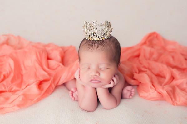 2016 Newborns