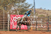 Newman Rodeo 2016-971