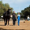 2016_Vaulting_Camelot_(3195_of_3844)