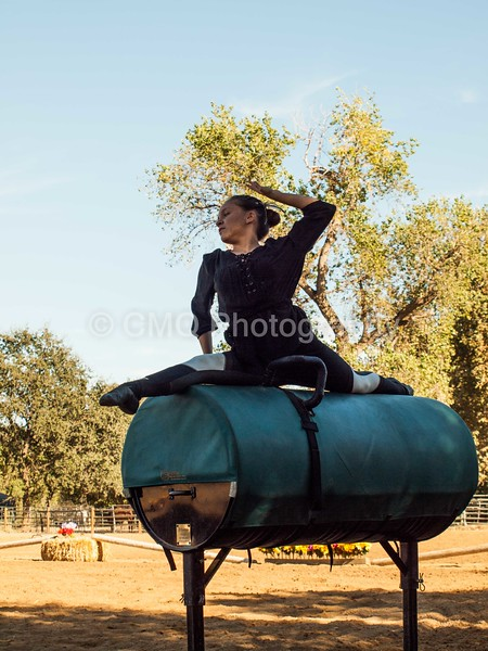 2016_Vaulting_Camelot_(278_of_614)