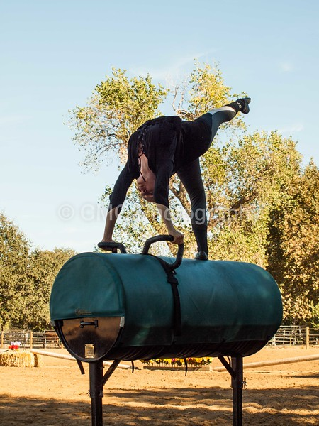 2016_Vaulting_Camelot_(282_of_614)