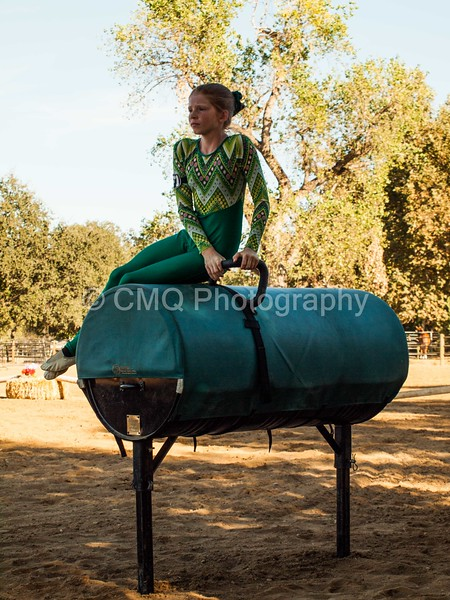 2016_Vaulting_Camelot_(349_of_614)