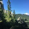 Mt. Shasta in distance