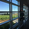 tasting room of Winderlea winery