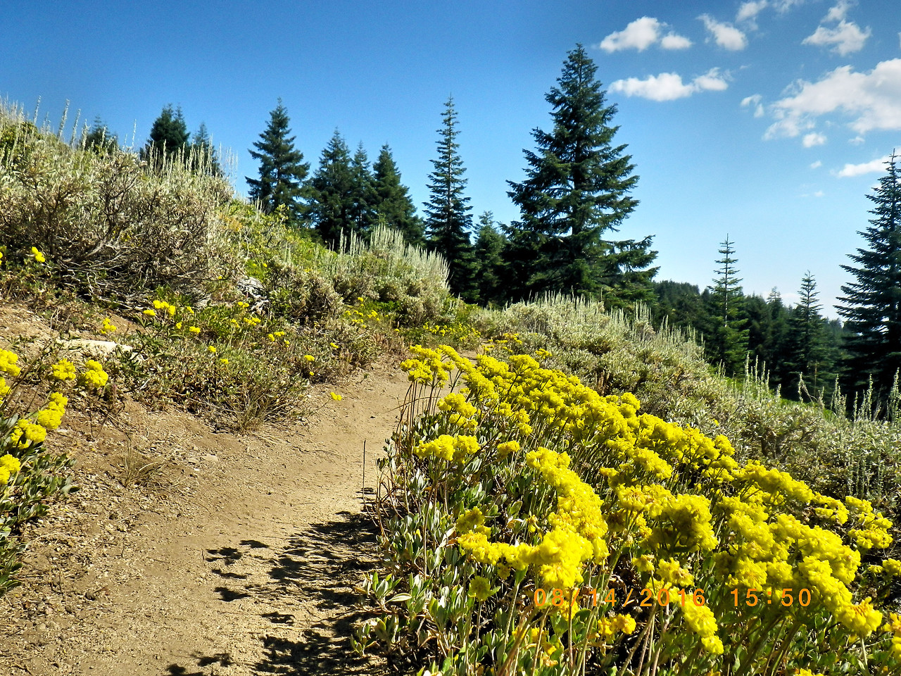 PCT<br /> Hiking<br /> Oregon