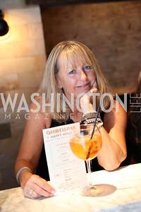 Deborah Whiteside. Photo by Tony Powell. Celebrate Logan. September 17, 2016