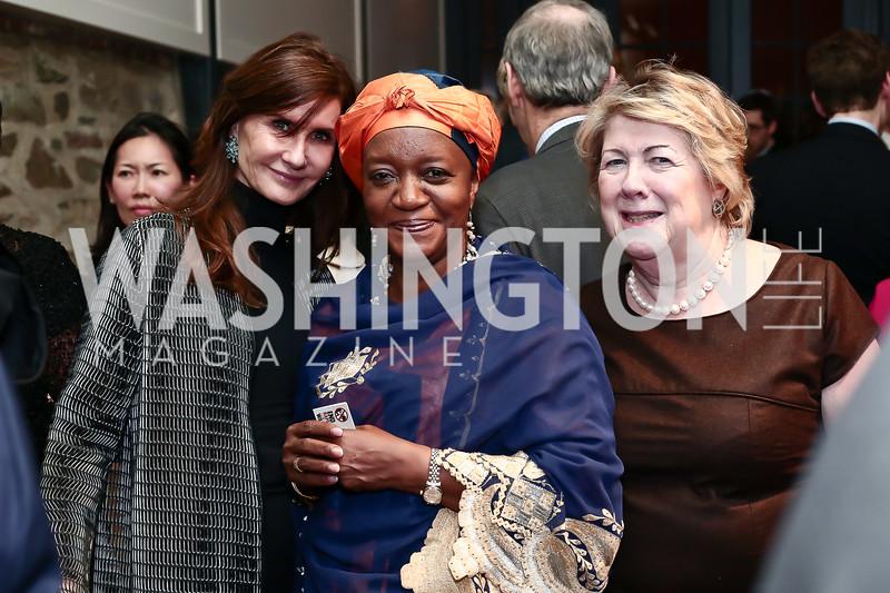 Kyle Gibson, Zainab Bangura, Mary Goudie. Photo by Tony Powell. 2016 Hillary Rodham Clinton Awards Dinner. Halcyon House. February 22, 2016