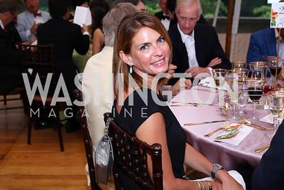 Erika Schiller. Photo by Tony Powell. 2016 S&R Washington Awards Gala. Evermay. June 4, 2016