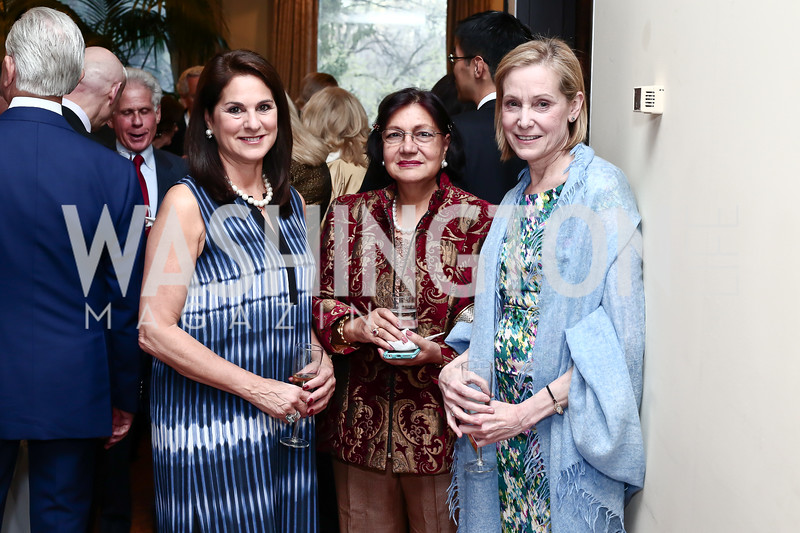 Cindy Howar, Nahinder Tak, Karen Darby. Photo by Tony Powell. 2016 Young Concert Artists Gala. Embassy of Hungary. April 8, 2016