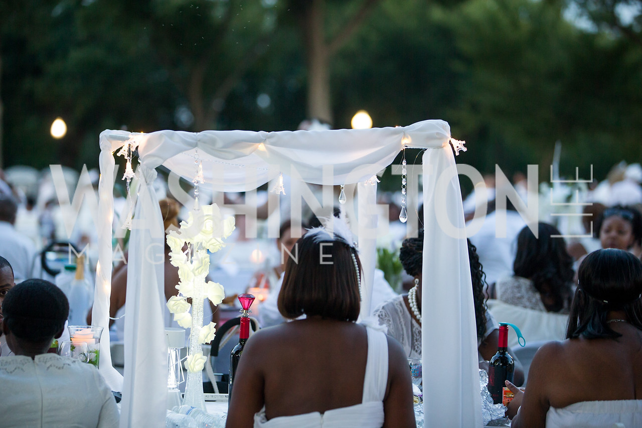Diner En Blanc. Photo by Erin Schaff
