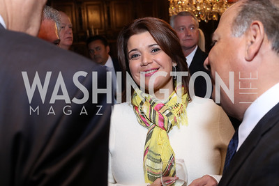 Ana Navarro. Photo by Tony Powell. Dinner for Rudy Giuliani. Residence of Colombia. December 7, 2016