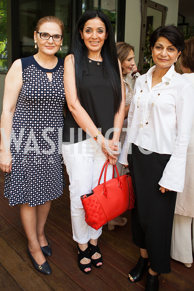 Mina Nakbeen, Dina Lutfi, Shamim Jawad