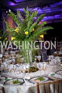 Photo by Tony Powell. IRELAND 100 Opening Performance & Dinner. Kennedy Center. May 17, 2016