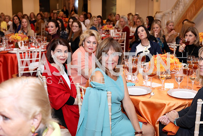 Photo © Tony Powell. Celebrating Women Luncheon. NMWA. October 14, 2016