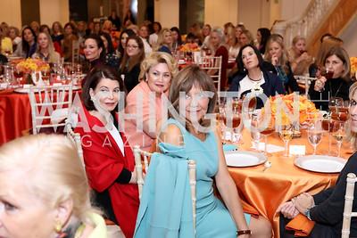 Photo © Tony Powell. Celebrating Women Luncheon. NMWA. October 14, 2016