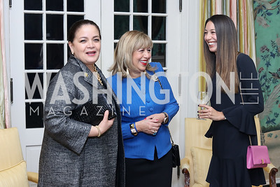 Maria Elena Sada, Edilia Gutierrez and Karina Gutierrez. Photo by Tony Powell. To Celebrate the Power of Diplomacy. Blair House. November 16, 2016